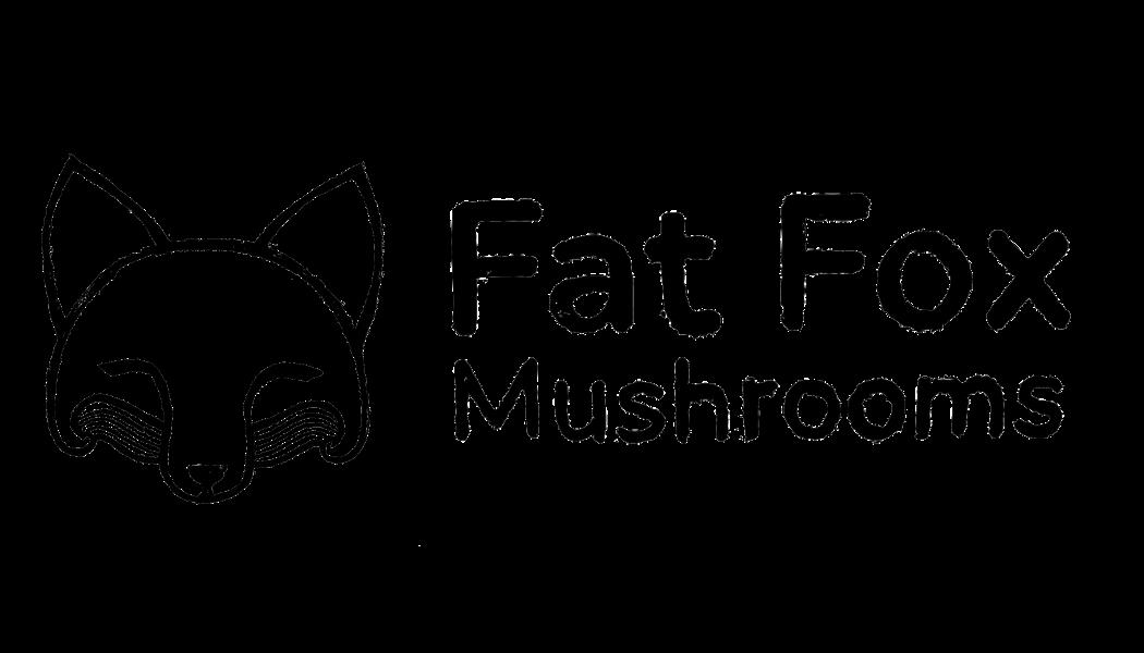Fat Fox Logo Clear Landscape