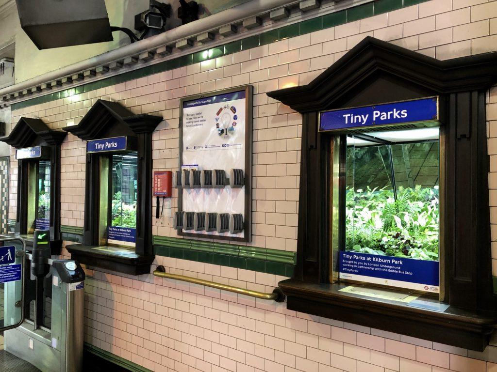 Tiny Parks-IMG_0275_hero