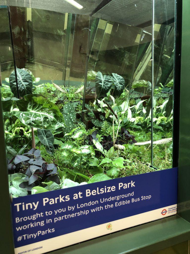 Tiny Parks-IMG_0619